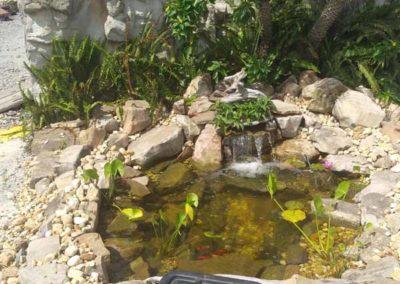 6 x8 natural pond