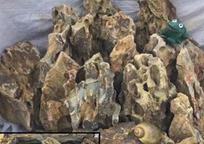 Seiryu Dragon Stone