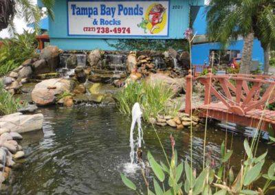 store location live pond demos