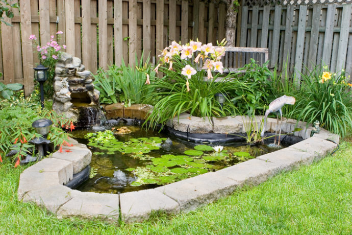 3 Reasons to Add a Pond to Your Backyard Garden