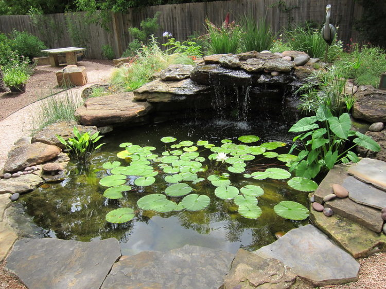 4 Advantages of Investing in a Backyard Garden Pond Kit
