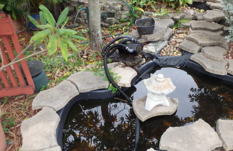 Tips for Troubleshooting Your Backyard Pond Pump